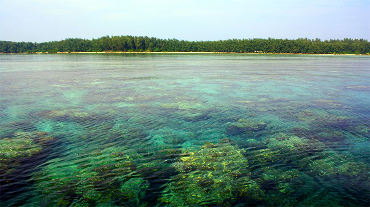 Hasil gambar untuk pulau seribu jakarta